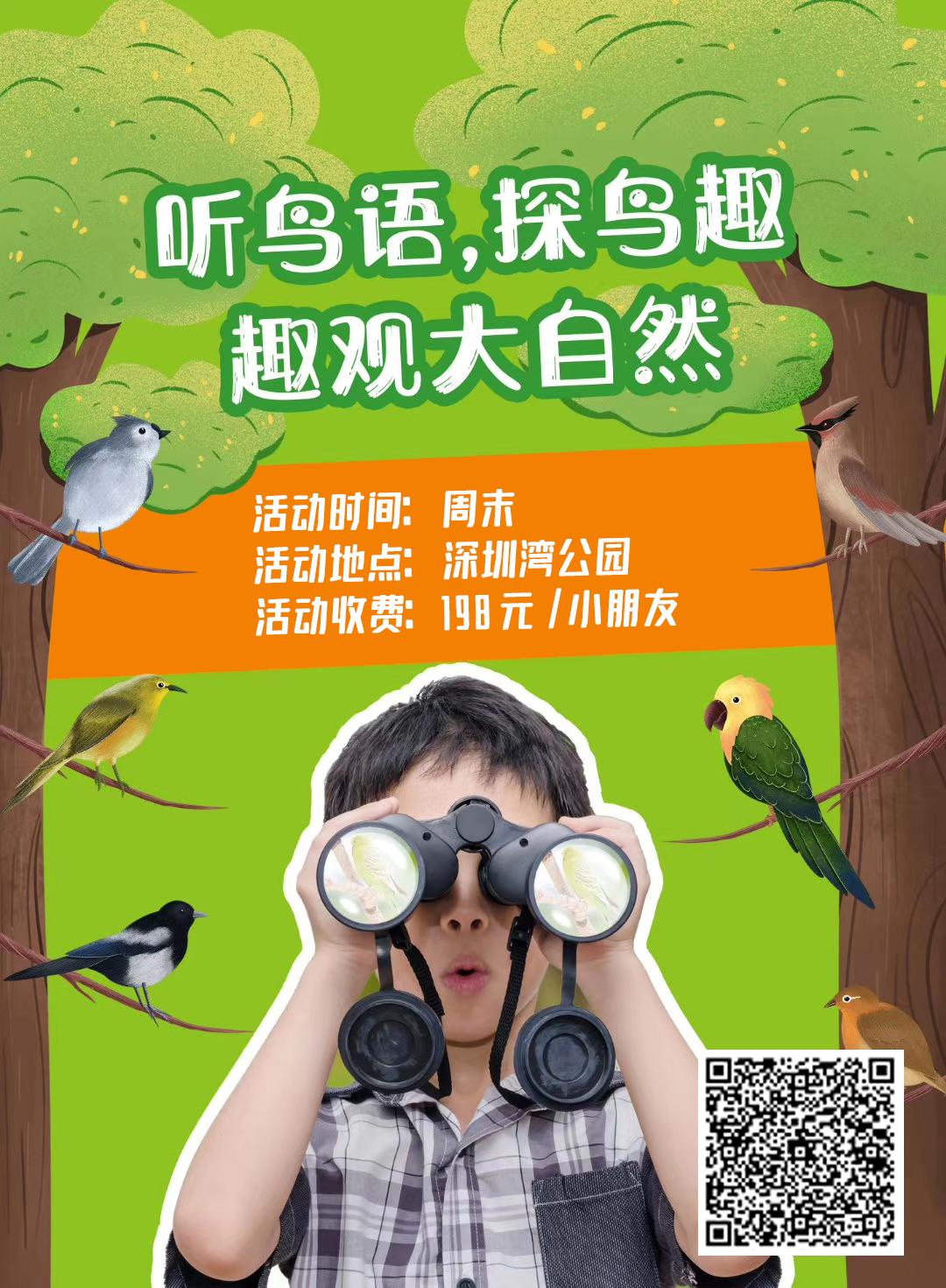 自然观鸟|听鸟语,探鸟趣,走进鸟儿的世界